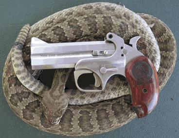 Bond Arms Snake Slayer